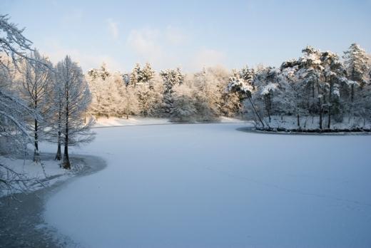 Befagyott folyó, havas erdővel.