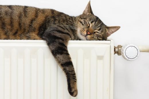 Egy cica alszik a radiátor tetején.