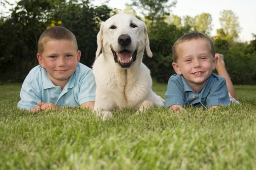 Két fiú között egy fehér kutya a fűben hason fekve ránk néz.