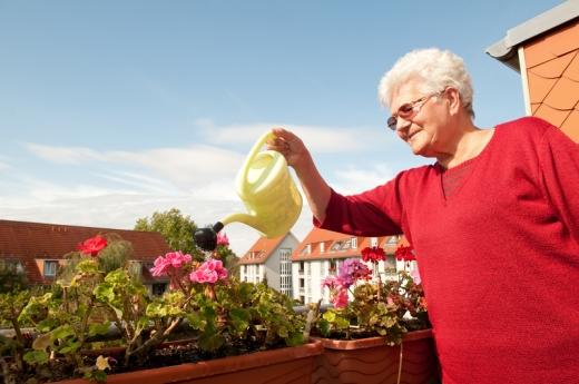 Egy nyugdíjas nő az erkélyen muskátlikat öntöz.