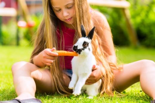 Kislány a fűben ülve egy fehér nyuszik répával etet.