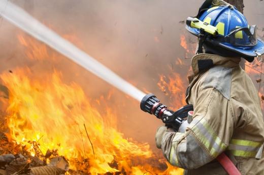 Egy tűzoltó vízsugárral olt egy erdőtüzet.