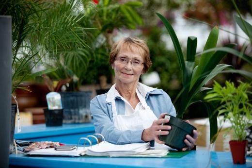 Egy idősebb nő asztalnál ül és egy cserepes virágot fog a kezében.