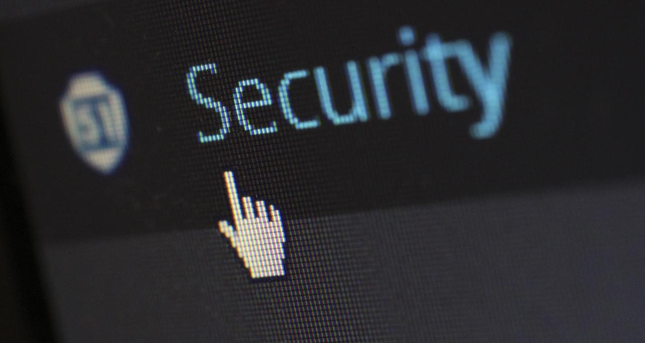 Demonstrálja, hogy a cikk az adatvédelemről szól
