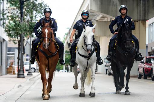 lovas, lovaglás, városi közlekedés, KRESZ, közlekedési szabályok,